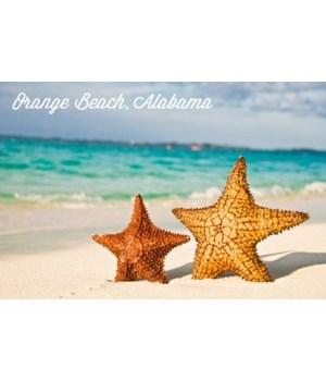 Orange Beach, AL - Starfish on Beach