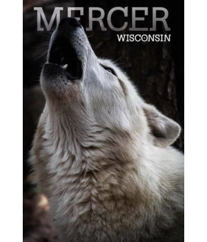 Mercer, WI - Wolf Howling