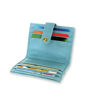 ScanSafe® Credit Card Caddy 24PC