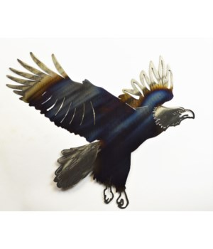 "Eagle landing Wall Art 18"" Wall Art"