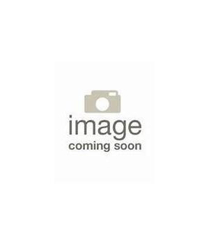 WINDOW GRAPHIC - CLEMSON TIGERS