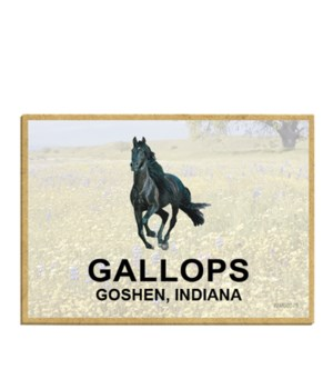 Gallop - Goshen, Indiana -Blk Horse Logo