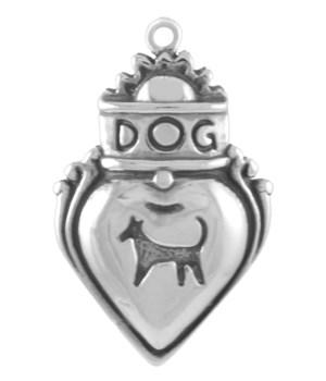 AMORE DOG