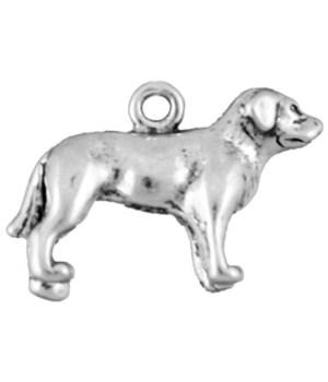LABRADOR DOG  3-D