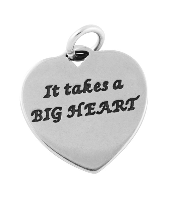 BIG HEART TEACH MINDS