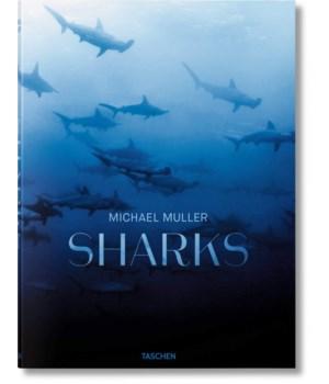 Michael Muller Sharks