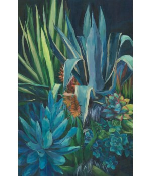 40x60 Succulents II