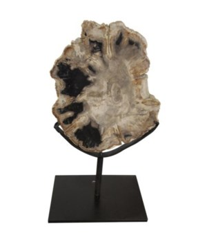 Wood Fossil with Stand, 10""