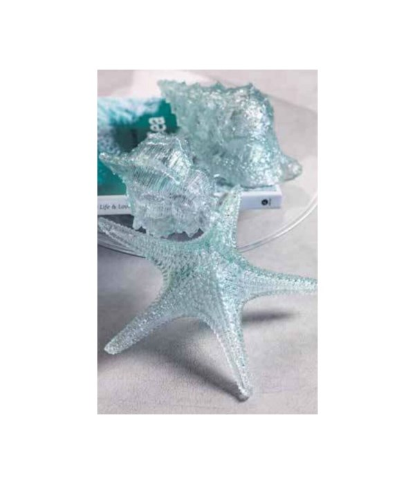 Cayo Decorative Starfish
