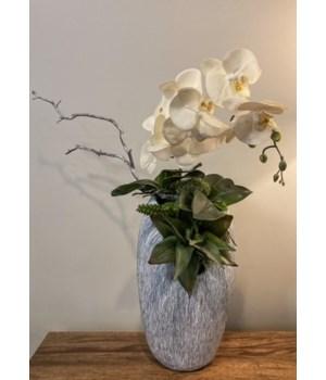 Orchids in Grey Vase