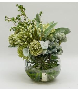 Bubble Bowl Lambs Ear Buds/Succulents