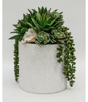 Succulent/Crystal in White Pot