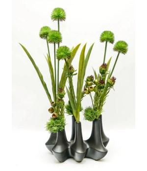 Mod Black Vase Allium