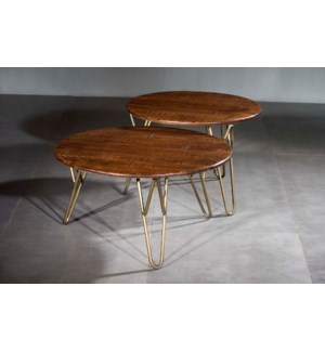 Wooden Iron Round Table Set