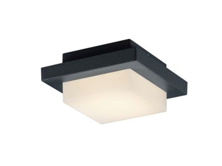 Hondo Wall/Ceiling Mount in Dark Gray