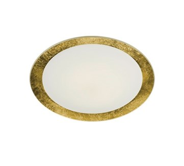 Vancouver 2 Light Flush Mount in Gold Plated