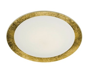 Vancouver 3 Light Flush Mount in Gold Plated