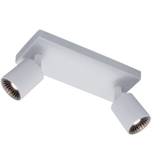 Cayman 2 Light Ceiling Mount in White