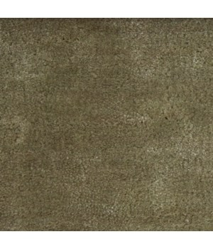 Lake Carpet Light Green 55X78In