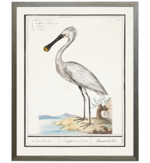 Vertical white spoonbill water bird