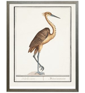 Vertical heron w/blue legs waterbird