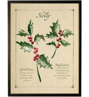 Holiday holly with definition
