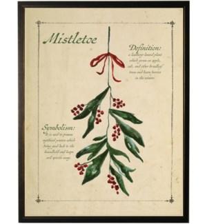 Holiday mistletoe with definition black shadowbox