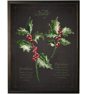 Christmas holly on black background