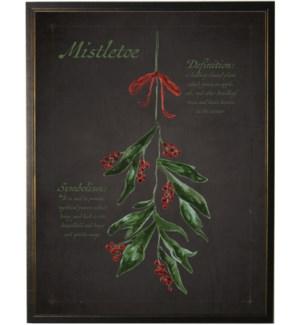 Christmas Mistletoe on black background