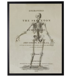 Skeleton on book page poster
