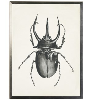 Watercolor black bug