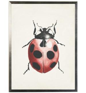 Watercolor ladybug