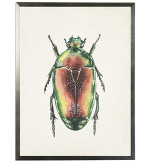 Watercolor green and orange bug