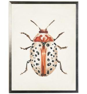 Watercolor orange and beige bug