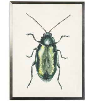 Watercolor light green bug