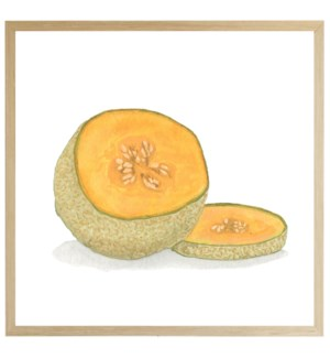 Watercolor Cantaloupe on bright background
