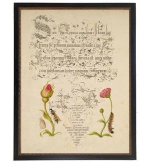 Vintage bookplate from the 1500s with calligraphy with Rosebud