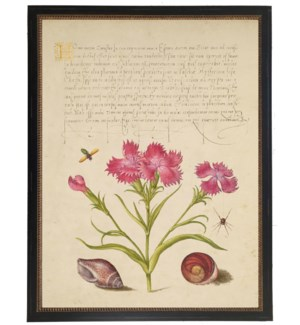 Vintage bookplate from the 1500s with calligraphy with pink flowers
