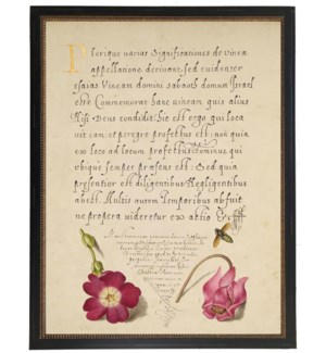Vintage bookplate from the 1500s with calligraphy with pink flower with bee