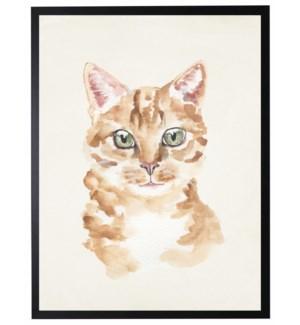 Watercolor Orange cat