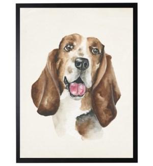 Watercolor Bassett Hound
