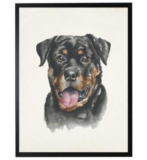 Watercolor Rottweiler
