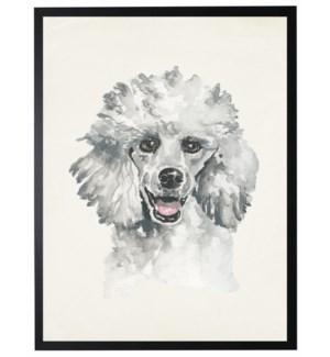 Watercolor Poodle
