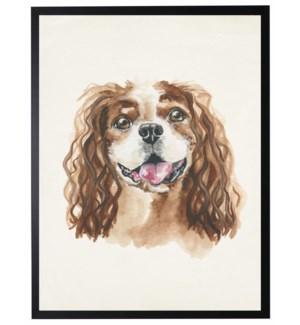 Watercolor Cavalier King Spaniel