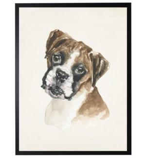 Watercolor Boxer