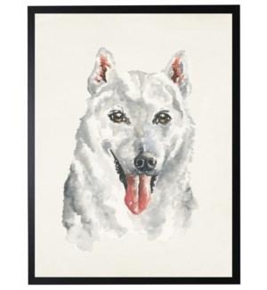 Watercolor Husky