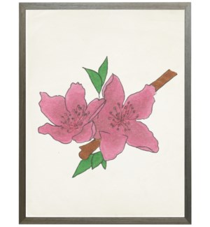 Watercolor Peach Blossom Flower