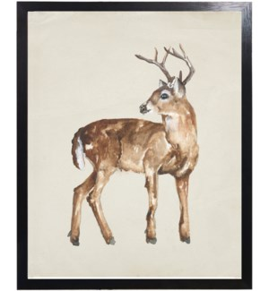 Watercolor woodland 6 point buck