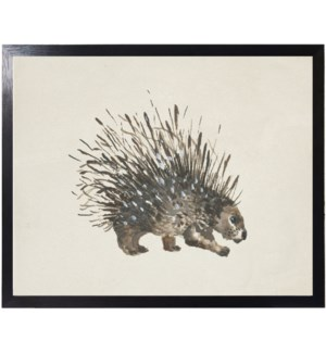 Watercolor woodland porcupine