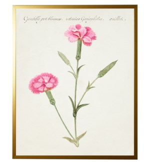 Vintage bookplate with carnations